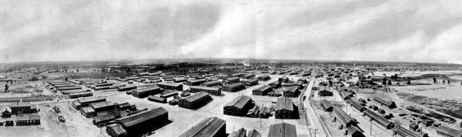 Panoramic Photograph of Camp Lee, 1917