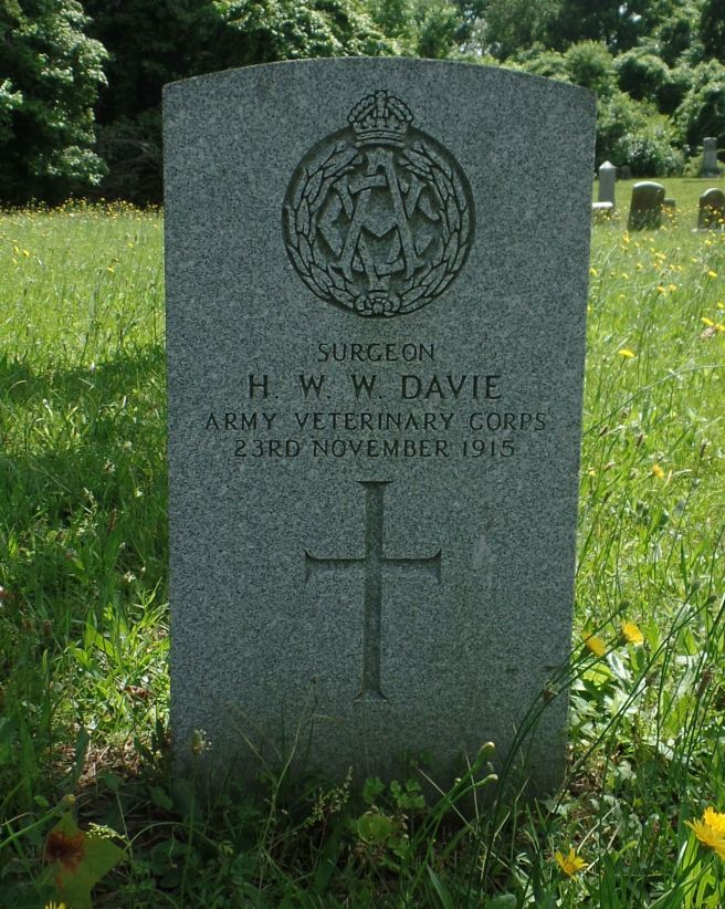 The grave of Dr Henry William Wilson Davie MRCVS at Greenlawn Cemetery, Newport News