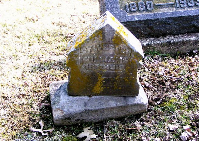 The family marker on the grave of Private Sylvester Williams